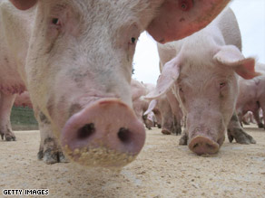 www.cnn.com/2009/HEALTH/04/24/swine.flu/index.html