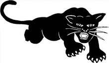 Symbol of the Black Panthers