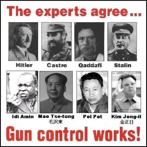 Experts agree on gun control