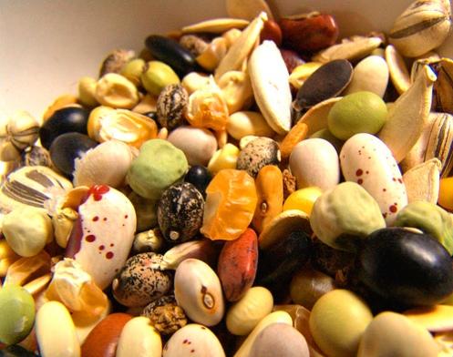 http://www.kitchengardeners.org/pics/seeds053006.jpg